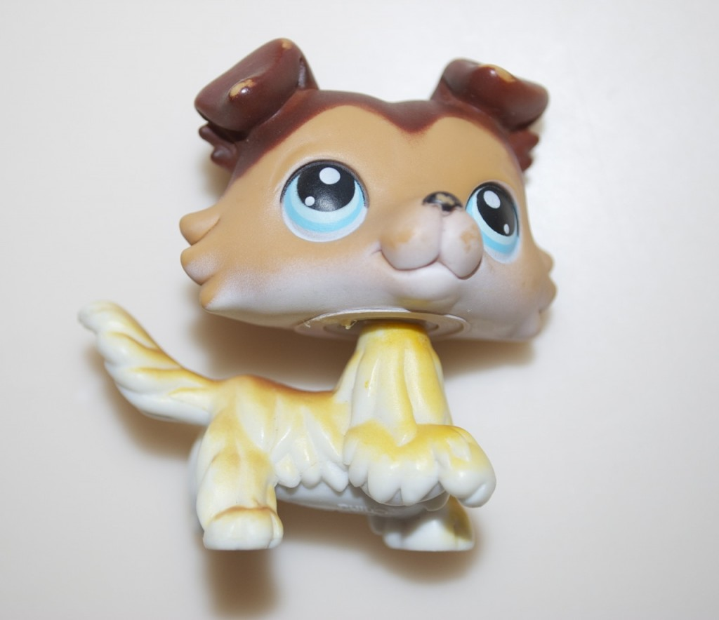 Littlest Pet Shop Dogs List Rare Littlest Pet Shop High